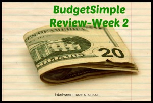 budgetsimplew2