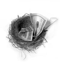 nest-egg-security-1241471
