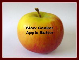 apple2-1560425